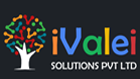iValei Solutions Pvt Ltd